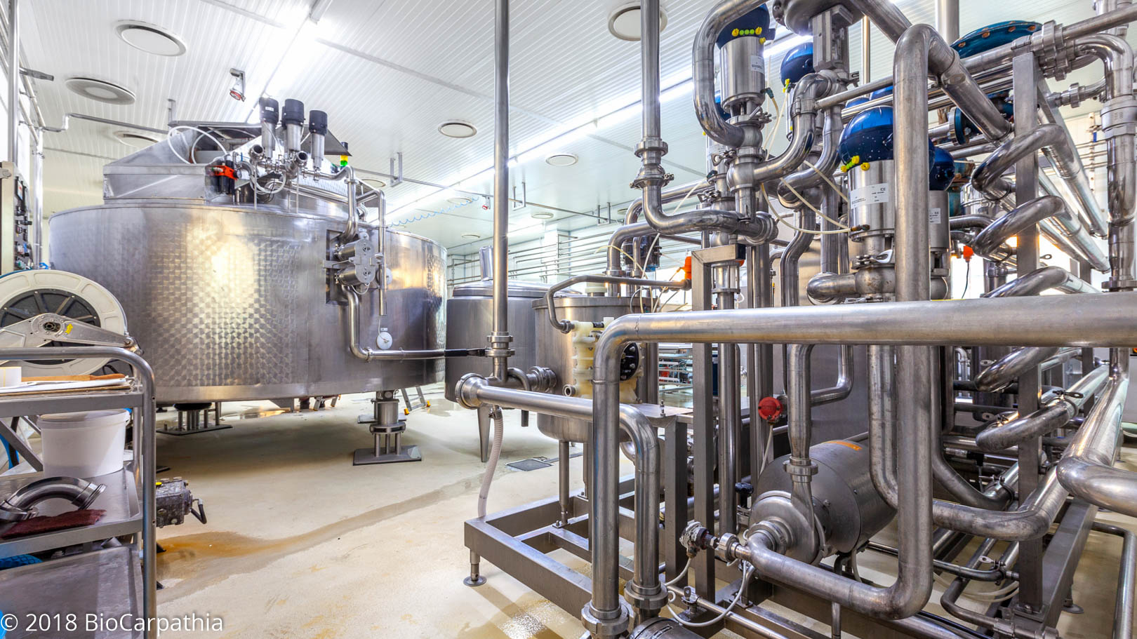 biocarpathia-parteneri-productie-milkom-16