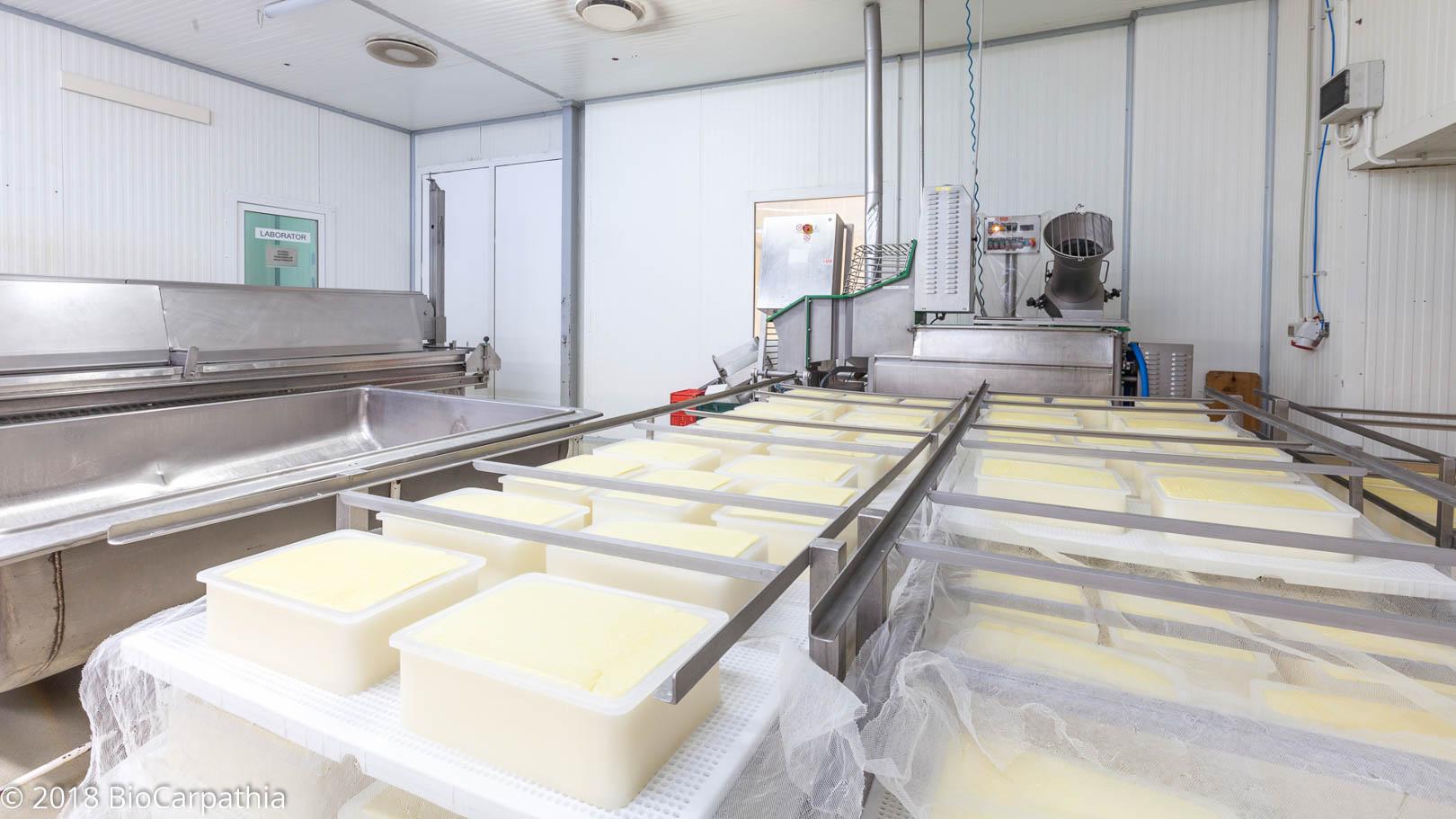 biocarpathia-parteneri-productie-milkom-9